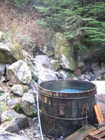 A large wooden tub, full of clear steaming water sits among rocks and trees.