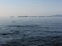 A line of large cargo ships against the horizon.  In the foreground birds fly low across the water.