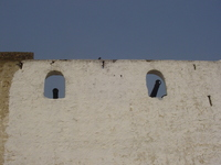 Rusty old cannons poke through the battlements of a whitewashed fort.