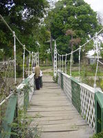 A metal suspension bridge, rusting through the green and white paint