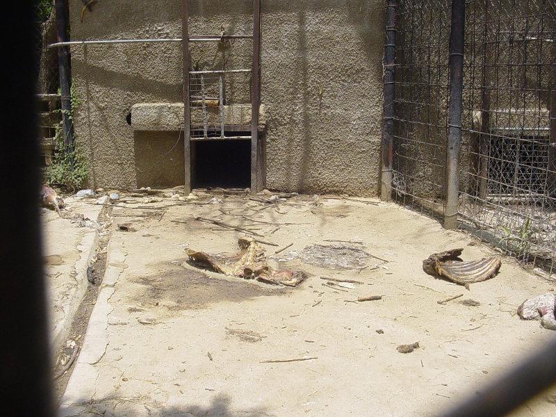 Similar Galleries: Zoo Cage Clip Art , Empty Cage , Empty Zoo Exhibit ...