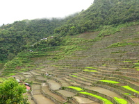 Stone-faced rice terraces leading up a steep slope.