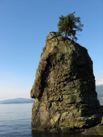 A rock spire with a tree on top stands in water.  Mountains in the background.