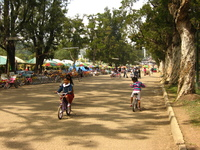 Children cycling on a quiet road in a park.