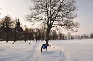A path through snow leads up the middle of the picture.  On the left is a castle seen through trees.  On the right is a frozen and snow-covered lake.