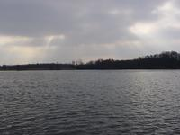 Picture of Wroxham Broad